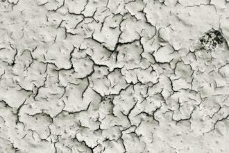 EPA-Lead Based Paint Risk Assessor Initial (204)