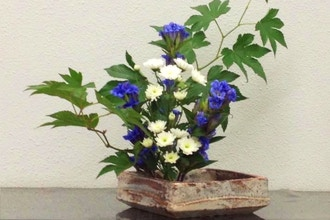Japanese Flower Arrangement (Ikebana)
