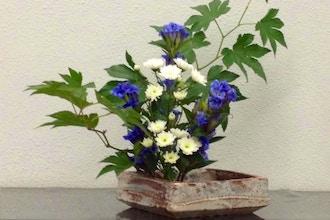 Virtual Japanese Flower Arrangement - Misho Ikebana