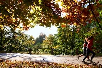 Photography Workshop: Capture Autumn