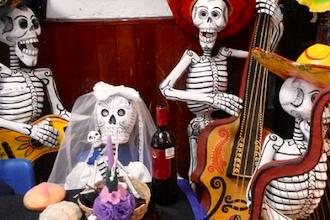 Bones and Skeletons for Holloween