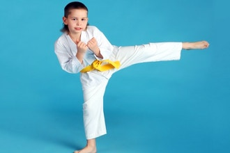 Kenpo Karate Level II (Ages 5 years and Up)