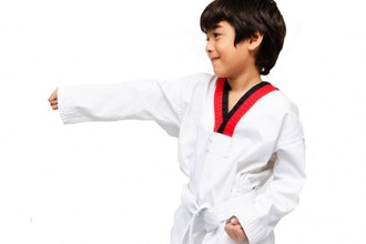 Kenpo Karate: Level I (Ages 5+)