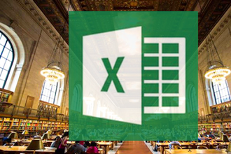 MS Excel 2010 for Beginners