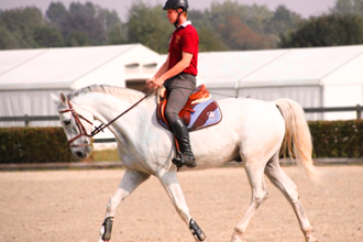 Learn Horseback Riding Class for Beginners