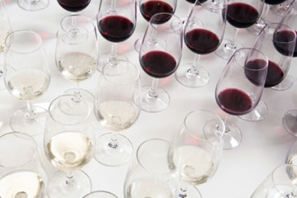 Wine Tasting: Becoming a Wine Connoisseur