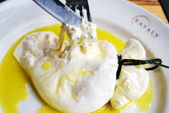 Hands-On Cheesemaking: Burrata