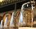 Spring-Inspired Wine Tasting at Bar Sabbia