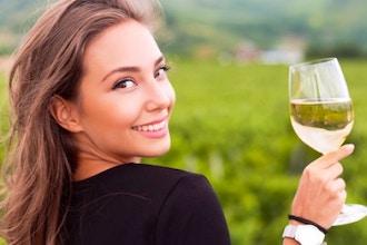 Unlock the Secrets of Wine