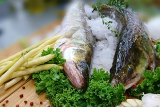 Lunch and Learn: Fresh and Sustainable Seafood