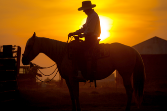 The American Cowboy History: The Reality & the Myth