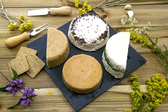 Raw & Cooked Vegan Cheese