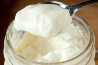 Yogurt Making Workshop