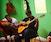 Intermediate to Advanced Flamenco & Spanish Guitar