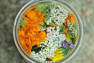 Nourishing the Skin with Herbal Infusions