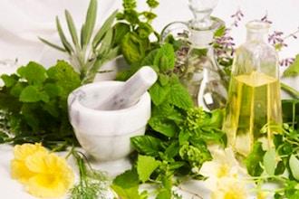 Herbs 101: Intro to Medicinal Herbs
