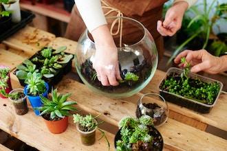 Private Group Terrarium Workshop (Materials Included)