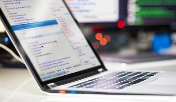 Software Skills Training