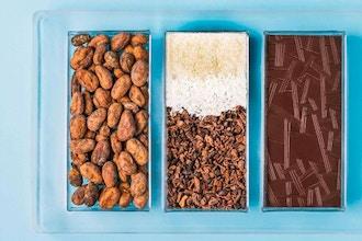 Bean-to-Bar Chocolate