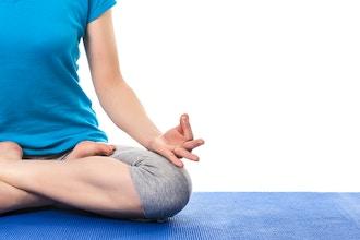 Basic Vinyasa Yoga