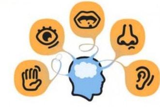 Sensory Processing Emotions and Behavior