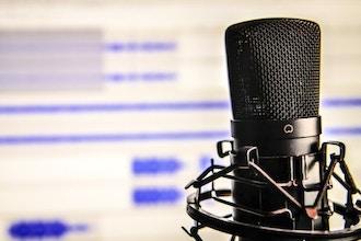 Voiceover Primer for Actors