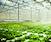 Food & Emerging Technologies