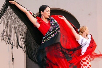 Flamenco Level 2 (Package)