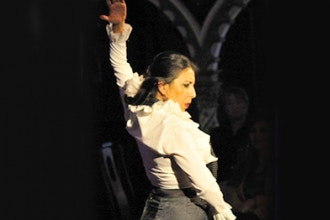 Flamenco Level 3 & 4 (intermediate/Advanced)