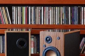 Build your own 2-way Loudspeakers