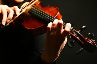 Violin Class for the Novice