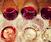 Wine 101 @ USQ
