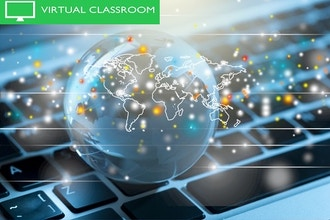 Globalization (Online): Strategies for Your Enterprise
