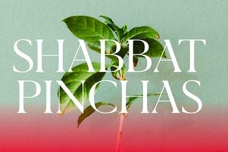 Shabbat Pinchas