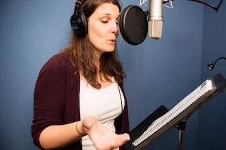 Voice Over: Intro to Online Casting Webinar