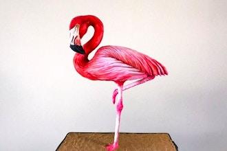 Sideserf Flamingo Cake Workshop