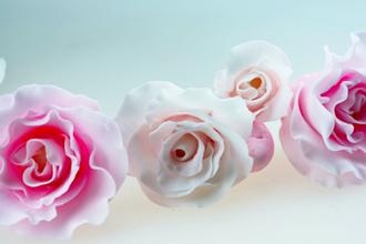 Gumpaste Flowers 101 (2-Day)