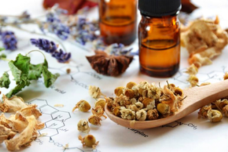 Introduction to Herbal Healing & Medicine Making