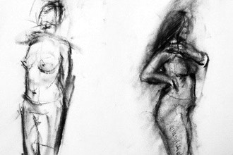 Adult: Drawing Anatomy : The Human Body