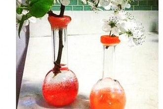 Filled with Fire: Bottle Vessel Vase
