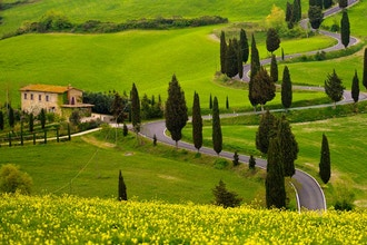 Tuscany's Summer Bounty: A 4-Course Chef's Table