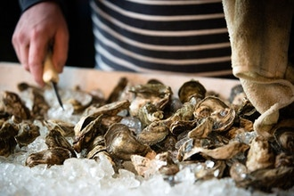 Guided Wine & Oyster Tasting with Island Creek Oysters