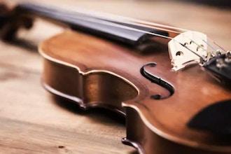 Adult Beginner Violin (Long Island)