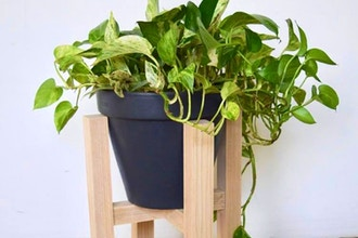 Milling Lumber and Basic Joinery: Plant Stand