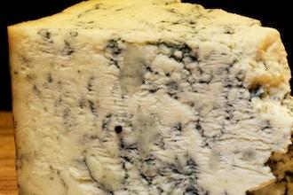 How to Speak Cheese