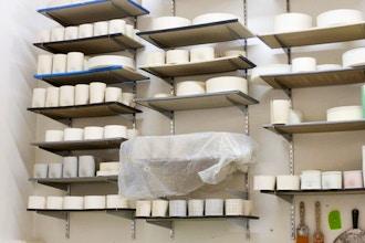 Wilcoxson Brooklyn Ceramics Photo