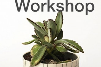 Porcelain Planter Workshop
