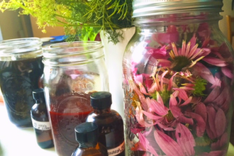 Herbal Medicine Making 101