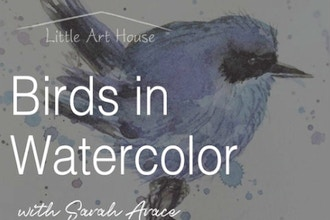 Birds in Watercolor