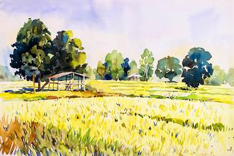 Fluid Watercolor Landscapes